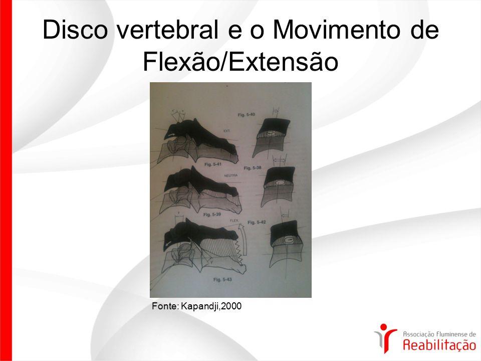 Disco vertebral e o Movimento de Flexão/Extensão Fonte: Kapandji,2000