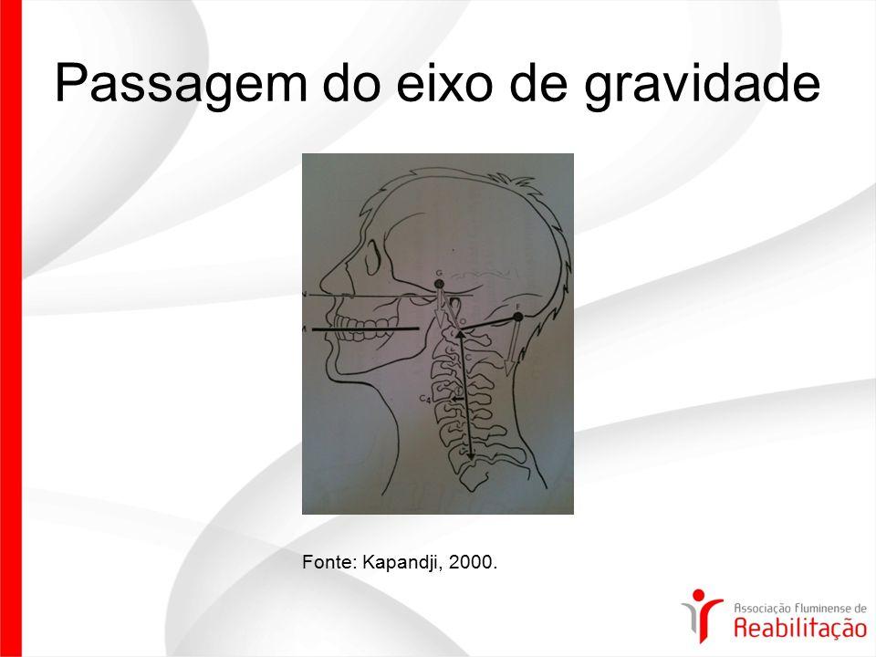 Objetivos do tratamento Normalizar das curvaturas Normalização das tensões musculares Normalização dos espaços intervertebrais Diminuição da pressão intradiscal