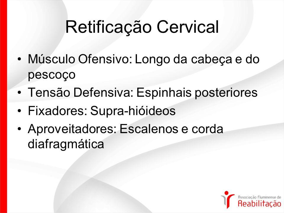 Retificação Cervical Músculo Ofensivo: Longo da cabeça e do pescoço Tensão Defensiva: Espinhais posteriores Fixadores: Supra-hióideos Aproveitadores: Escalenos e corda diafragmática