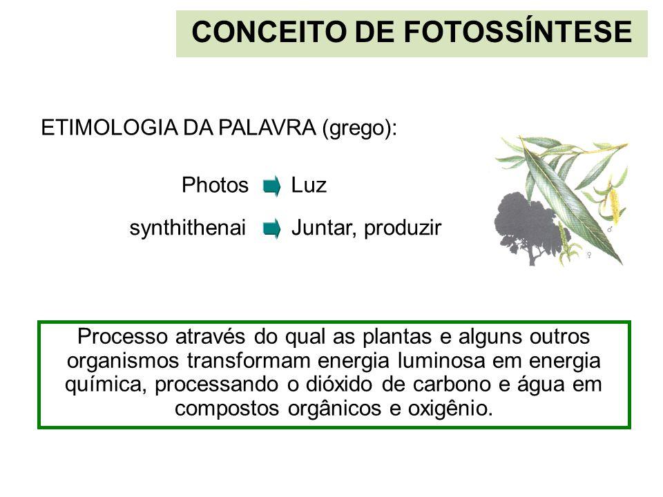 CONCEITO DE FOTOSSÍNTESE Photos Processo através do qual as plantas e alguns outros organismos transformam energia luminosa em energia química, proces