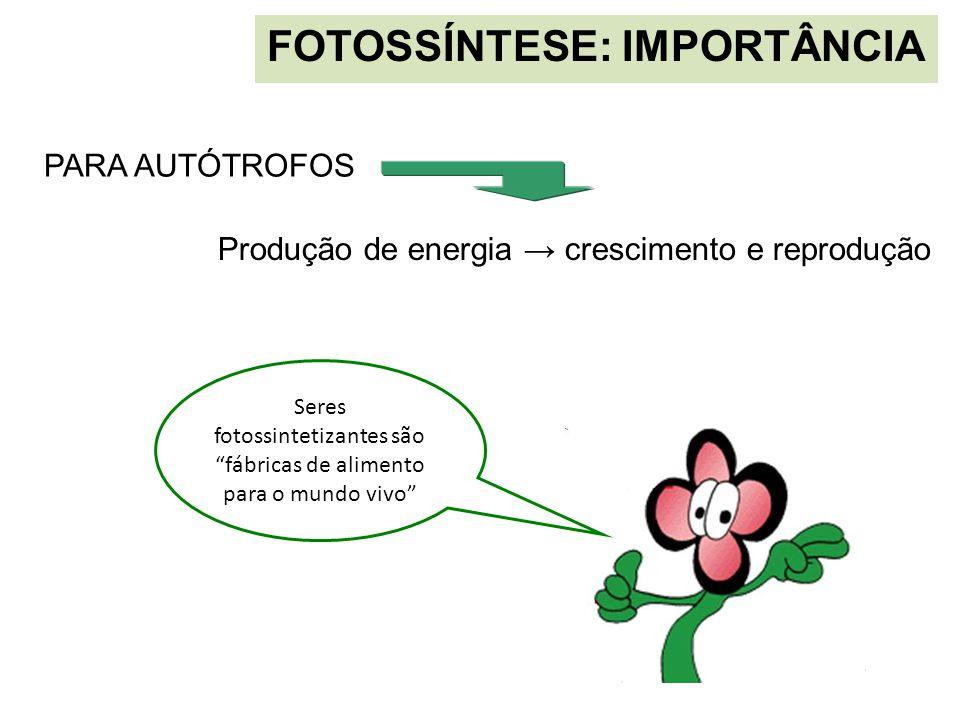 """FOTOSSÍNTESE: IMPORTÂNCIA PARA AUTÓTROFOS Produção de energia → crescimento e reprodução Seres fotossintetizantes são """"fábricas de alimento para o mun"""