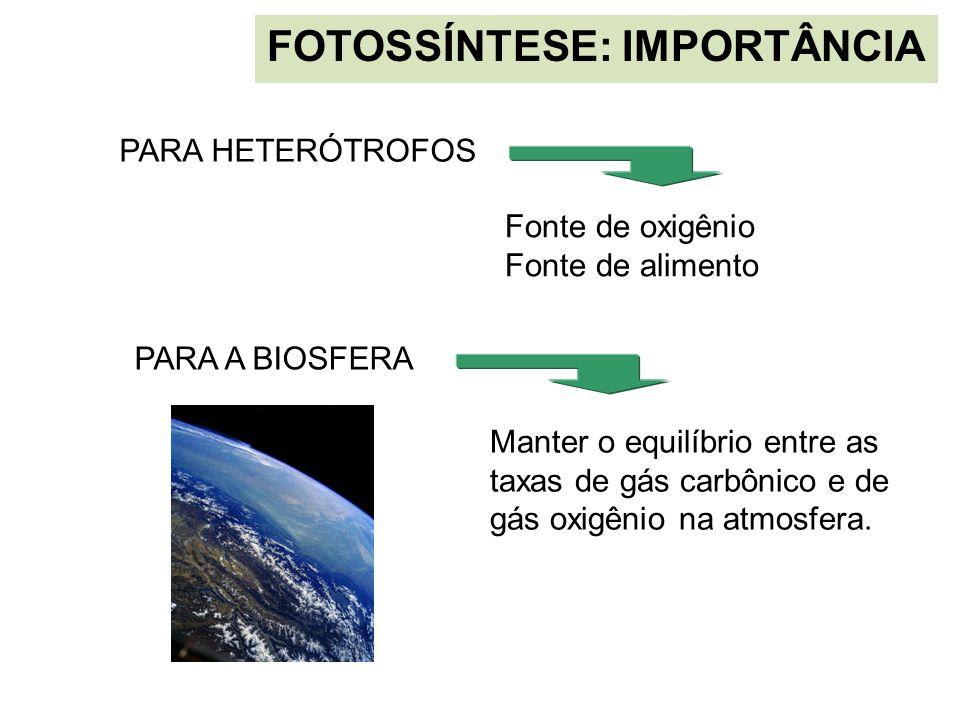 FOTOSSÍNTESE: IMPORTÂNCIA PARA A BIOSFERA Manter o equilíbrio entre as taxas de gás carbônico e de gás oxigênio na atmosfera. PARA HETERÓTROFOS Fonte