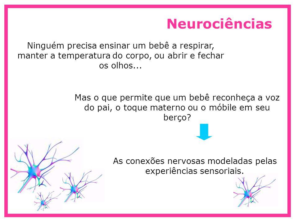 Neurônios Células nervosas que carregam as mensagens elétricas dentro do sistema nervoso e do cérebro Ao nascer, o cérebro tem 100 bilhões de neurônios, porém, as conexões nervosas capazes de ativá-lo ainda precisam ser construídas e estabilizadas Desafios, estímulos e exigências as quais as crianças são submetidas, especialmente no período do nascimento até os 3 anos de idade Sinapses Ligação através da qual o axônio de um neurônio pode sinalizar para o dentrito de outro através de impulsos nervosos.