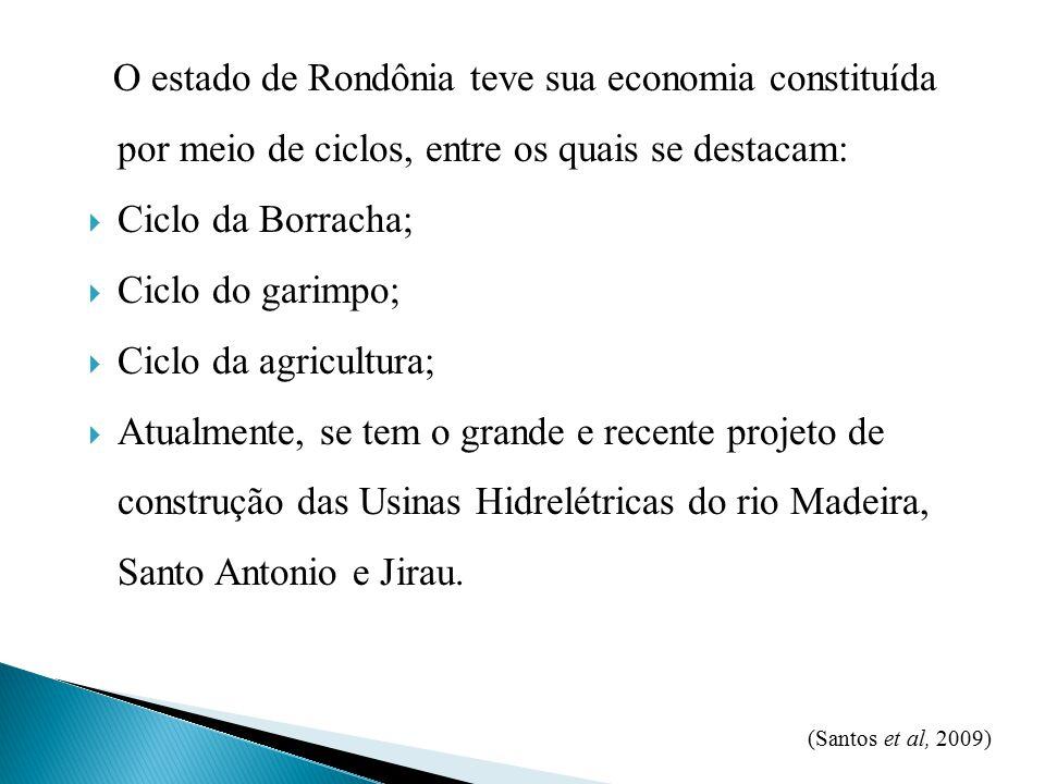 O estado de Rondônia teve sua economia constituída por meio de ciclos, entre os quais se destacam:  Ciclo da Borracha;  Ciclo do garimpo;  Ciclo da agricultura;  Atualmente, se tem o grande e recente projeto de construção das Usinas Hidrelétricas do rio Madeira, Santo Antonio e Jirau.
