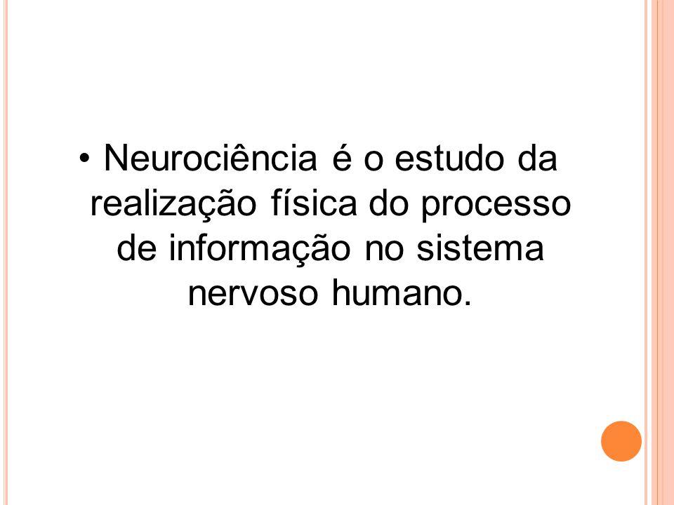 Neurociência é o estudo da realização física do processo de informação no sistema nervoso humano.
