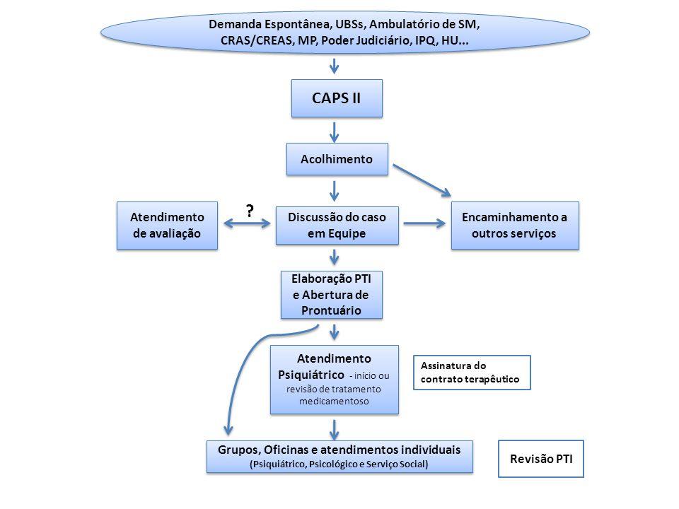 CAPS II Discussão do caso em Equipe Encaminhamento a outros serviços Atendimento de avaliação ? Atendimento Psiquiátrico - início ou revisão de tratam