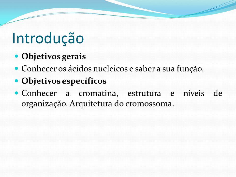Introdução Objetivos gerais Conhecer os ácidos nucleicos e saber a sua função.