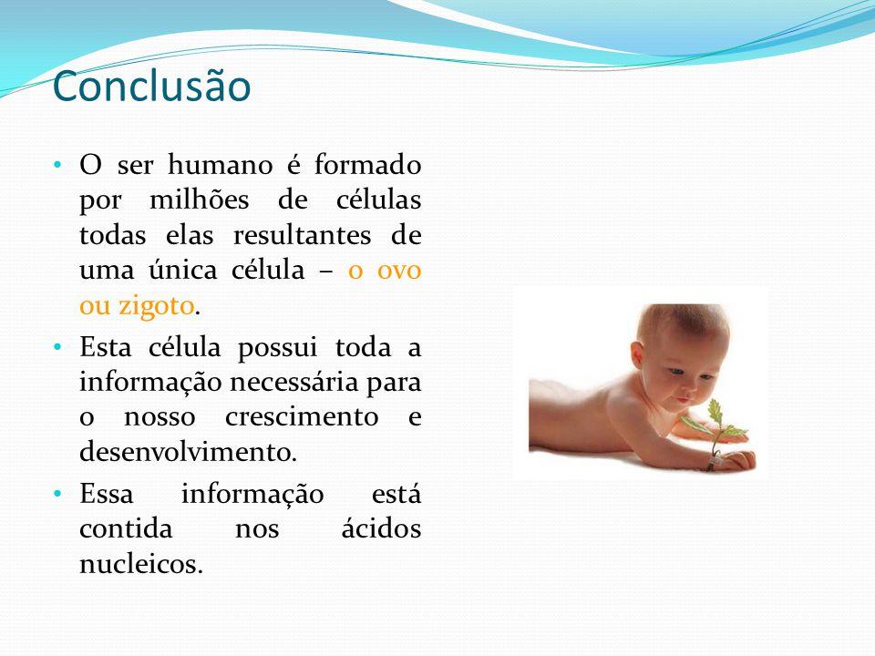 Bibliografia C.Azevedo, In Biologia Celular e Molecular , 2005, p.