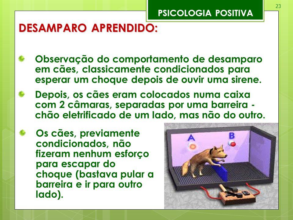23 PSICOLOGIA POSITIVA DESAMPARO APRENDIDO: Observação do comportamento de desamparo em cães, classicamente condicionados para esperar um choque depoi