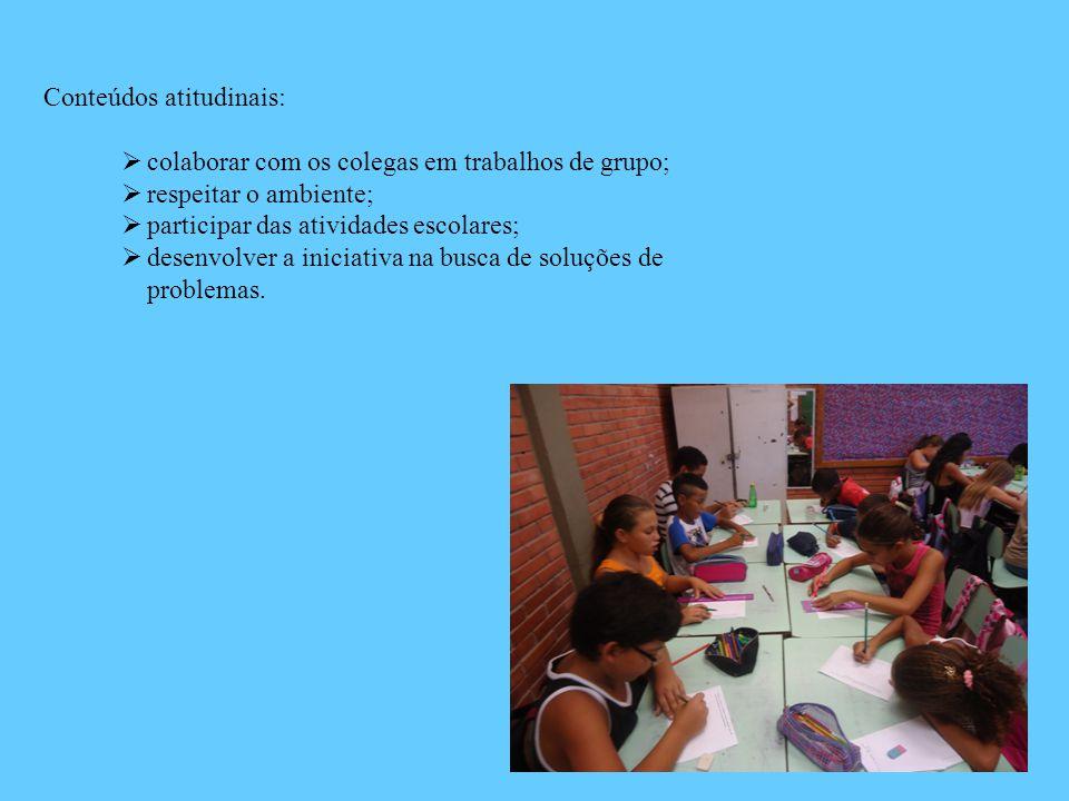 Conteúdos atitudinais:  colaborar com os colegas em trabalhos de grupo;  respeitar o ambiente;  participar das atividades escolares;  desenvolver
