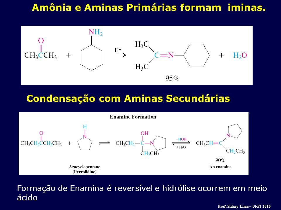 Amônia e Aminas Primárias formam iminas. Condensação com Aminas Secundárias Formação de Enamina é reversível e hidrólise ocorrem em meio ácido Prof. S