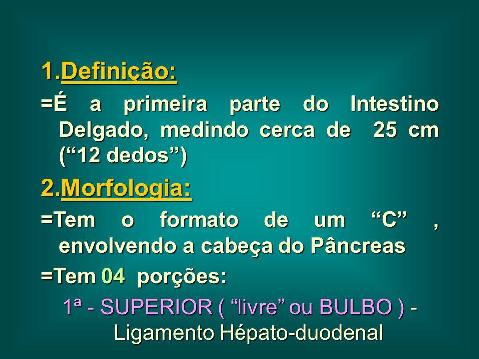 """1.Definição: =É a primeira parte do Intestino Delgado, medindo cerca de 25 cm (""""12 dedos"""") 2.Morfologia: =Tem o formato de um """"C"""", envolvendo a cabeça"""