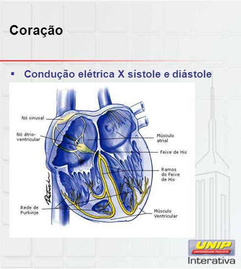 Coração  Condução elétrica X sístole e diástole