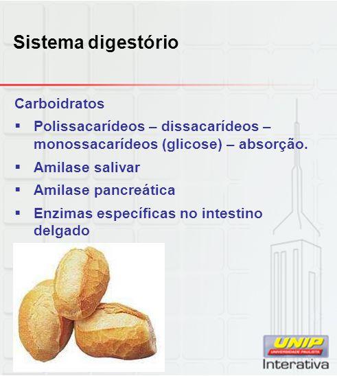 Sistema digestório Carboidratos  Polissacarídeos – dissacarídeos – monossacarídeos (glicose) – absorção.  Amilase salivar  Amilase pancreática  En