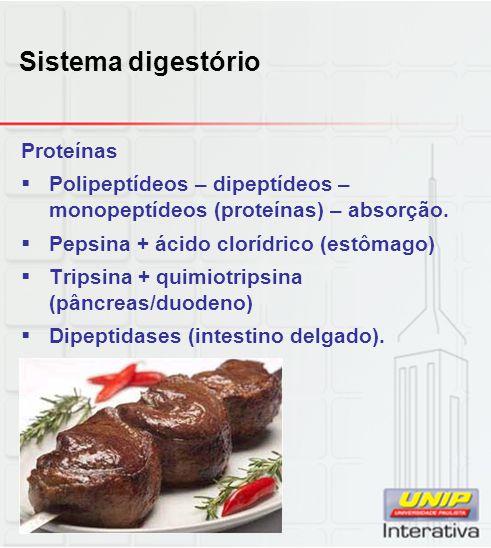 Sistema digestório Proteínas  Polipeptídeos – dipeptídeos – monopeptídeos (proteínas) – absorção.  Pepsina + ácido clorídrico (estômago)  Tripsina