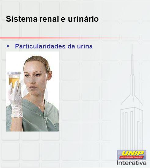 Sistema renal e urinário  Particularidades da urina