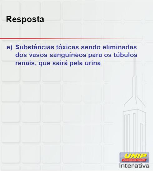 Resposta e)Substâncias tóxicas sendo eliminadas dos vasos sanguíneos para os túbulos renais, que sairá pela urina