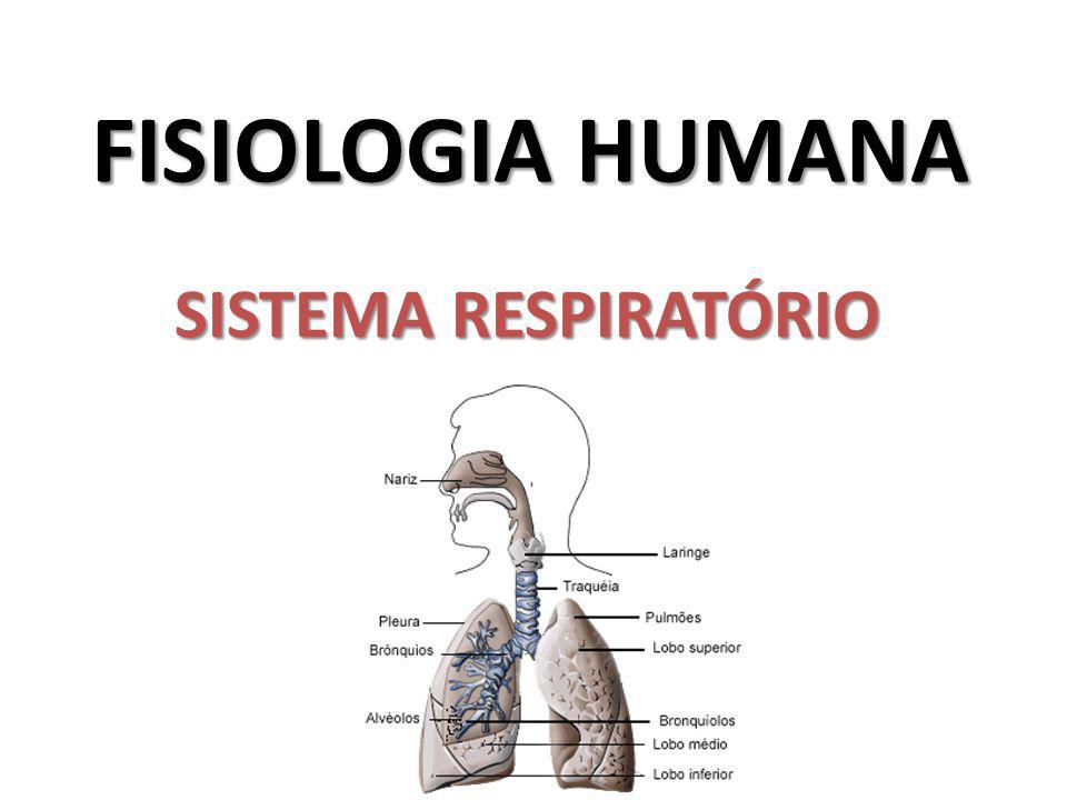 FISIOLOGIA HUMANA SISTEMA RESPIRATÓRIO