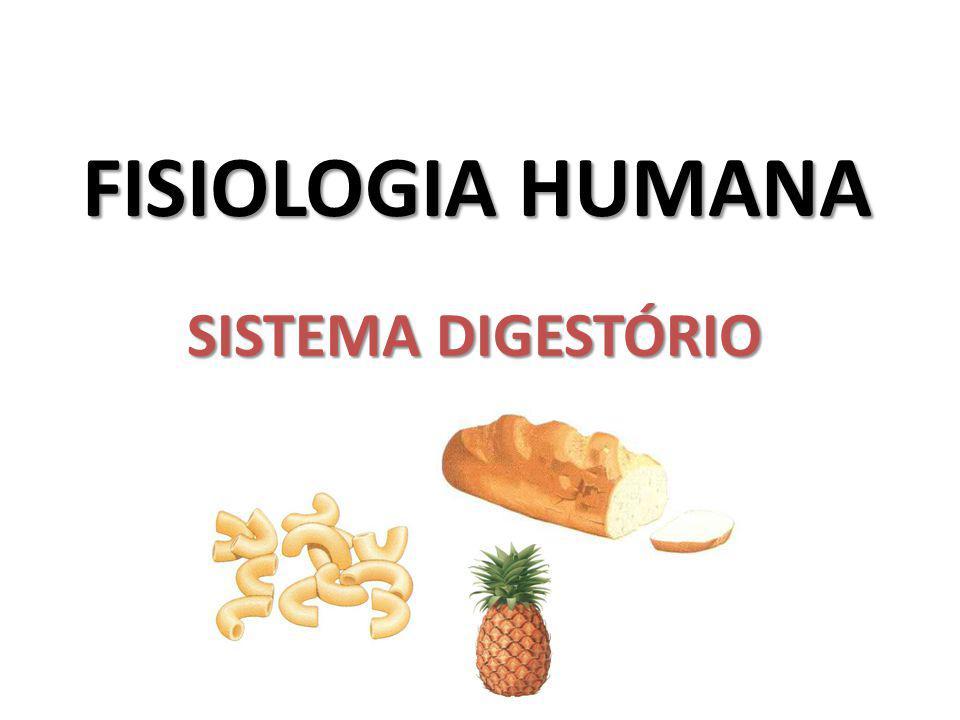 FISIOLOGIA HUMANA SISTEMA DIGESTÓRIO