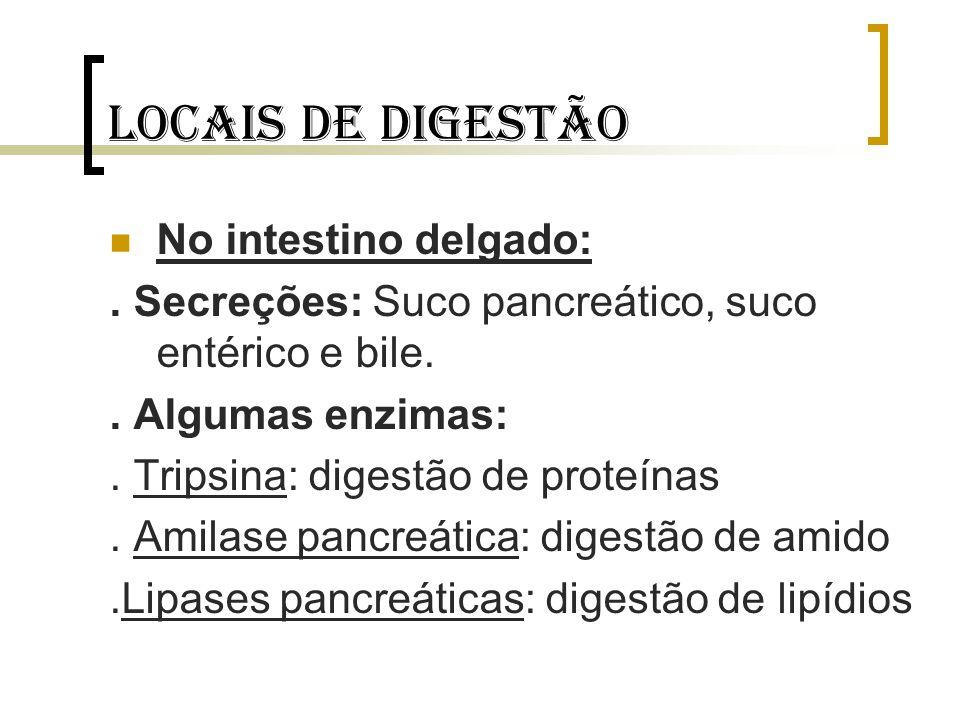 Locais de digestão No intestino delgado:. Secreções: Suco pancreático, suco entérico e bile.. Algumas enzimas:. Tripsina: digestão de proteínas. Amila