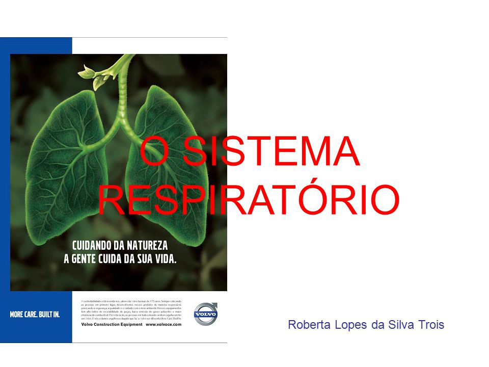 Roberta Lopes da Silva Trois O SISTEMA RESPIRATÓRIO