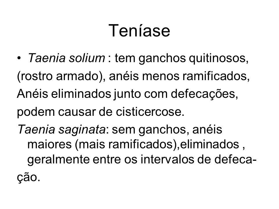 Teníase Taenia solium : tem ganchos quitinosos, (rostro armado), anéis menos ramificados, Anéis eliminados junto com defecações, podem causar de cisticercose.