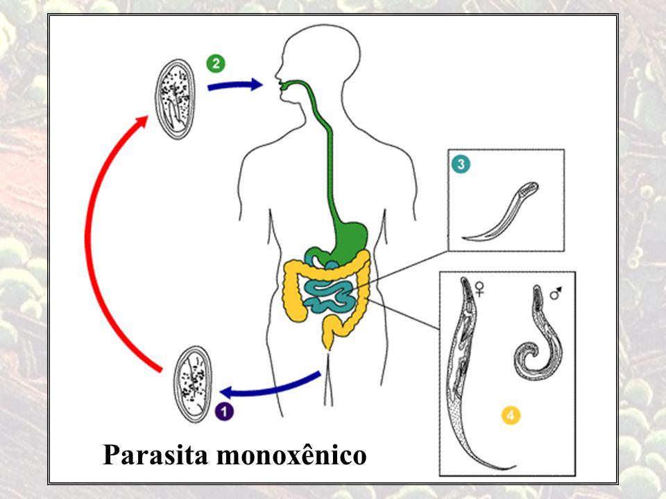 Parasitamonoxênico