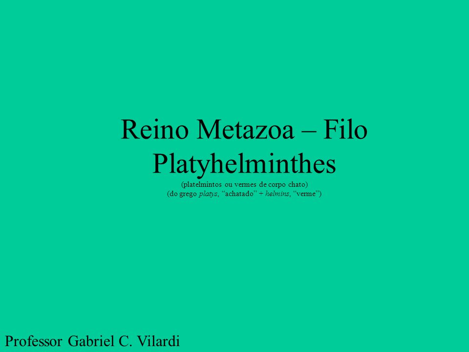 "Reino Metazoa – Filo Platyhelminthes (platelmintos ou vermes de corpo chato) (do grego platys, ""achatado"" + helmins, ""verme"") Professor Gabriel C. Vil"