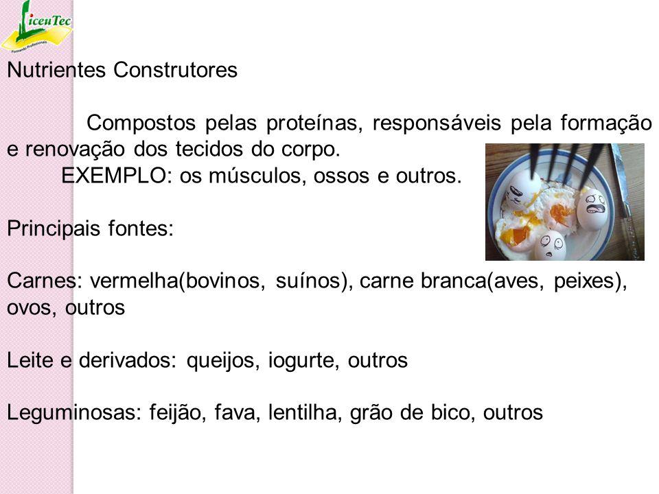 Nutrientes Construtores Compostos pelas proteínas, responsáveis pela formação e renovação dos tecidos do corpo. EXEMPLO: os músculos, ossos e outros.