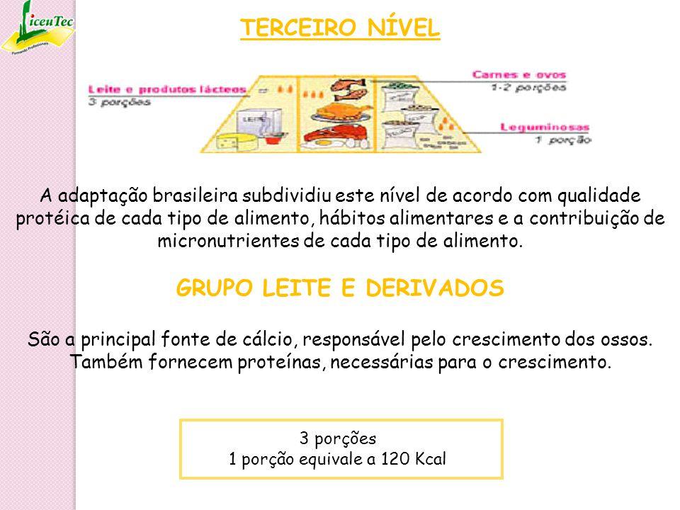 TERCEIRO NÍVEL A adaptação brasileira subdividiu este nível de acordo com qualidade protéica de cada tipo de alimento, hábitos alimentares e a contrib