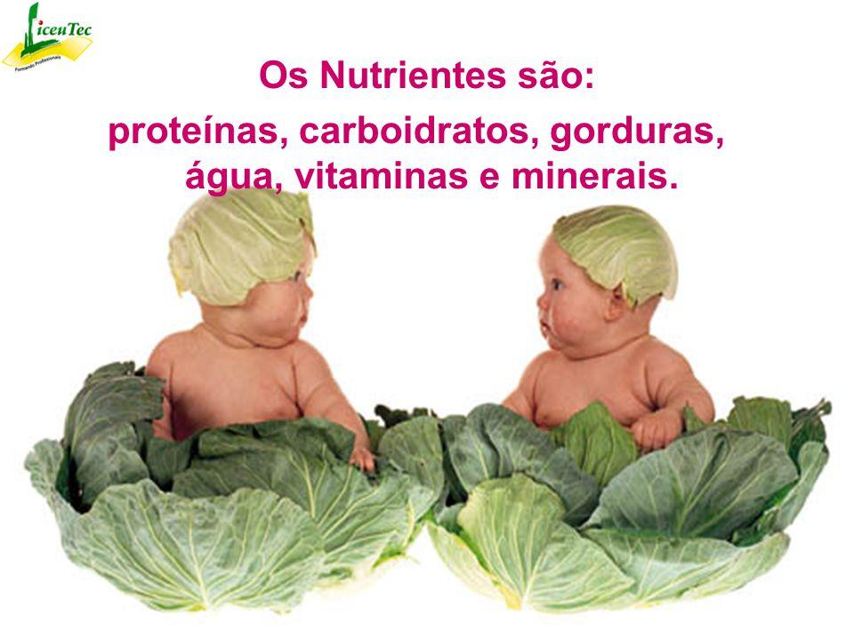 Os Nutrientes são: proteínas, carboidratos, gorduras, água, vitaminas e minerais.