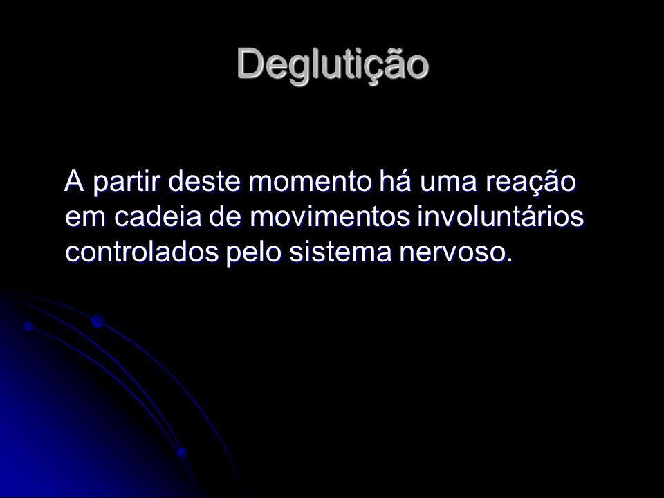 Deglutição A partir deste momento há uma reação em cadeia de movimentos involuntários controlados pelo sistema nervoso. A partir deste momento há uma