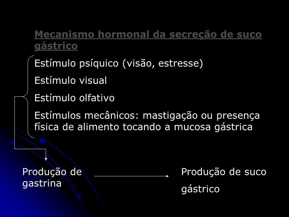 Mecanismo hormonal da secreção de suco gástrico Estímulo psíquico (visão, estresse) Estímulo visual Estímulo olfativo Estímulos mecânicos: mastigação