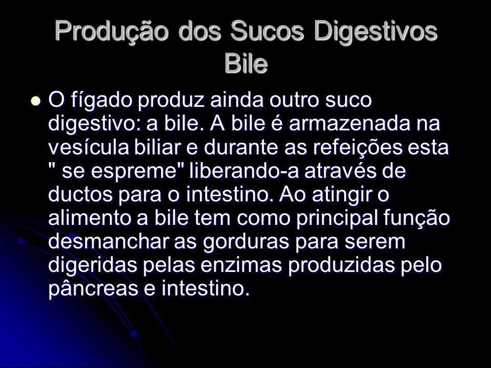 Produção dos Sucos Digestivos Bile O fígado produz ainda outro suco digestivo: a bile. A bile é armazenada na vesícula biliar e durante as refeições e