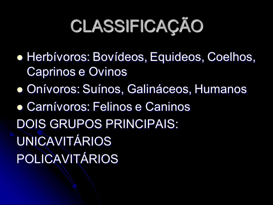 CLASSIFICAÇÃO Herbívoros: Bovídeos, Equideos, Coelhos, Caprinos e Ovinos Herbívoros: Bovídeos, Equideos, Coelhos, Caprinos e Ovinos Onívoros: Suínos,