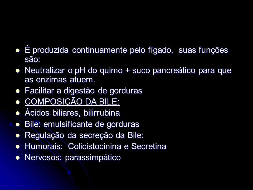 È produzida continuamente pelo fígado, suas funções são: È produzida continuamente pelo fígado, suas funções são: Neutralizar o pH do quimo + suco pan