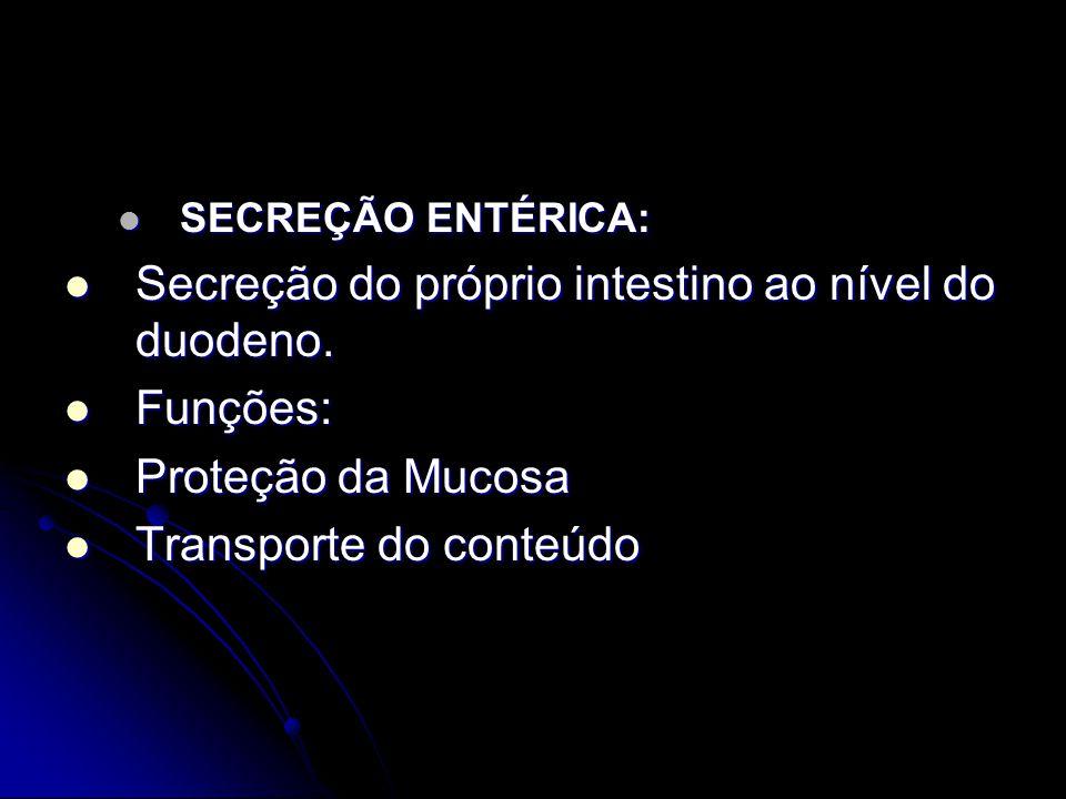 SECREÇÃO ENTÉRICA: SECREÇÃO ENTÉRICA: Secreção do próprio intestino ao nível do duodeno. Secreção do próprio intestino ao nível do duodeno. Funções: F