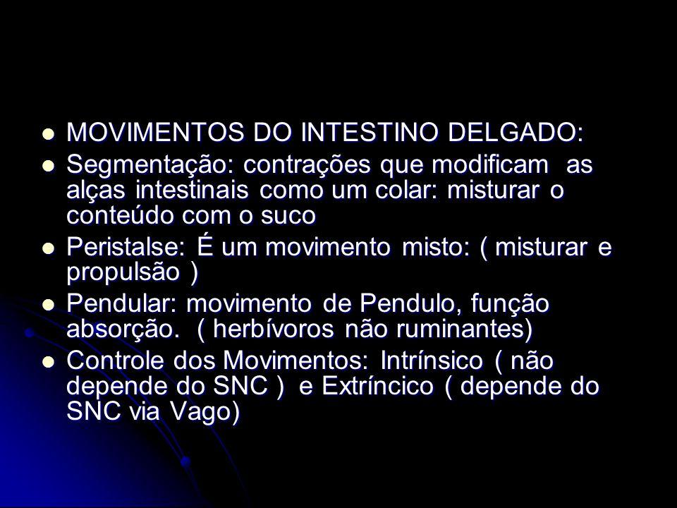 MOVIMENTOS DO INTESTINO DELGADO: MOVIMENTOS DO INTESTINO DELGADO: Segmentação: contrações que modificam as alças intestinais como um colar: misturar o