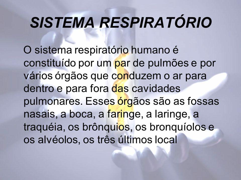 SISTEMA RESPIRATÓRIO O sistema respiratório humano é constituído por um par de pulmões e por vários órgãos que conduzem o ar para dentro e para fora das cavidades pulmonares.