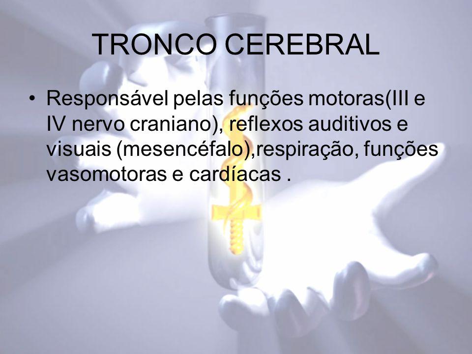 TRONCO CEREBRAL Responsável pelas funções motoras(III e IV nervo craniano), reflexos auditivos e visuais (mesencéfalo),respiração, funções vasomotoras e cardíacas.