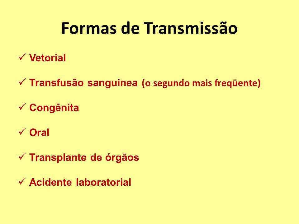 Formas de Transmissão Vetorial Transfusão sanguínea ( o segundo mais freqüente) Congênita Oral Transplante de órgãos Acidente laboratorial
