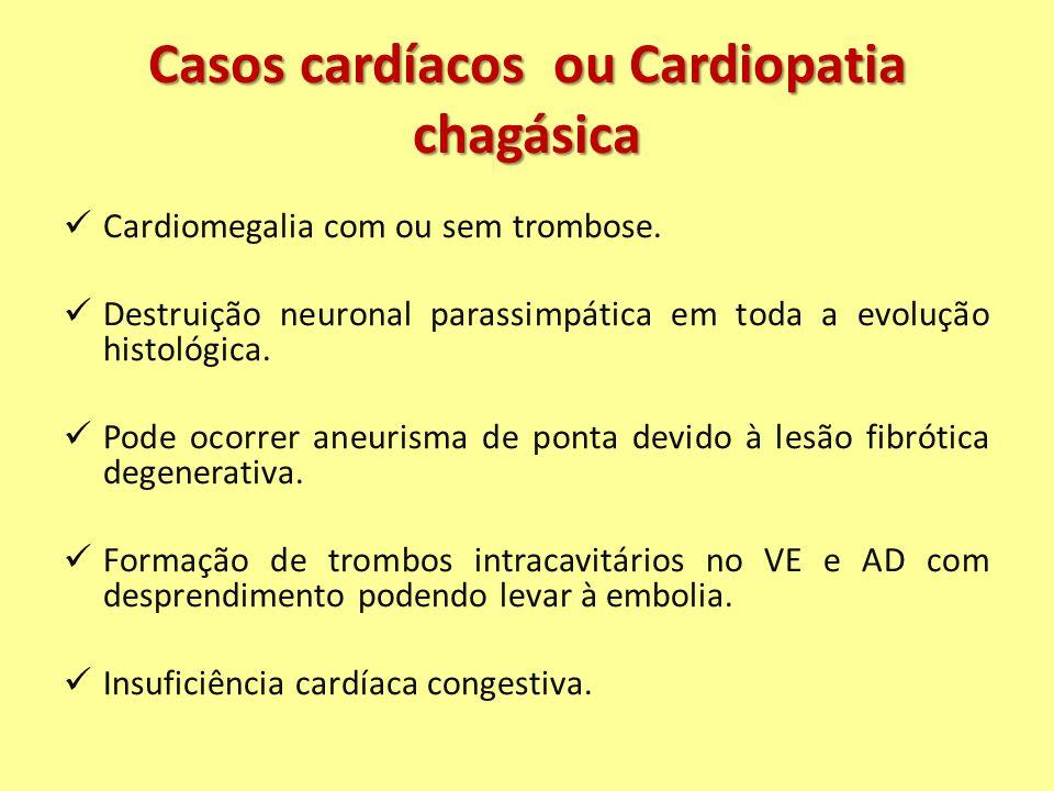 Casos cardíacos ou Cardiopatia chagásica Cardiomegalia com ou sem trombose. Destruição neuronal parassimpática em toda a evolução histológica. Pode oc