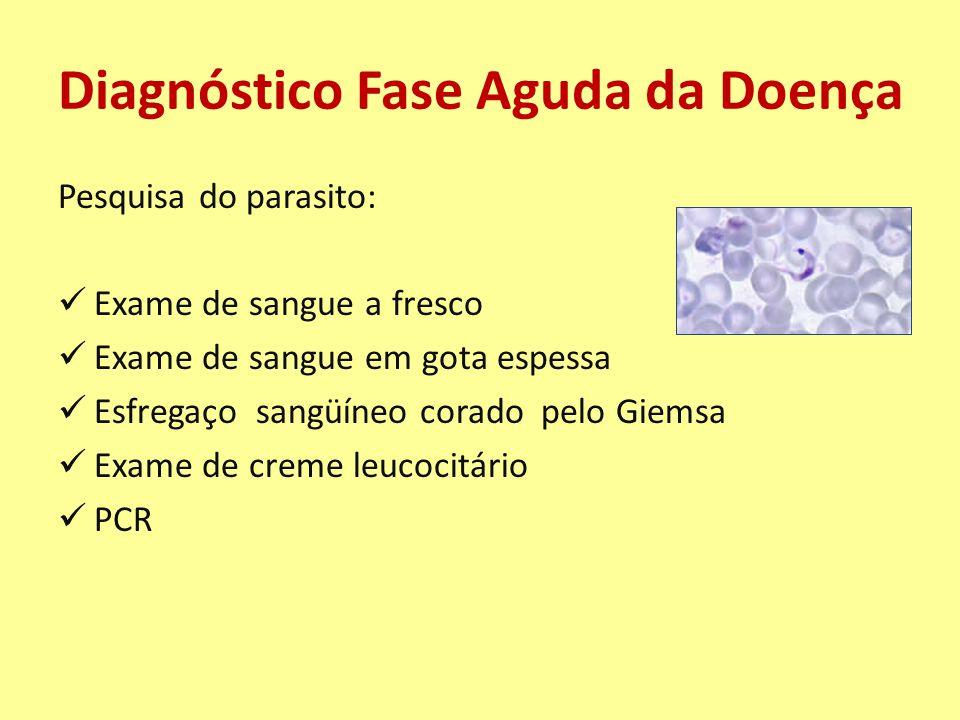 Diagnóstico Fase Aguda da Doença Pesquisa do parasito: Exame de sangue a fresco Exame de sangue em gota espessa Esfregaço sangüíneo corado pelo Giemsa Exame de creme leucocitário PCR