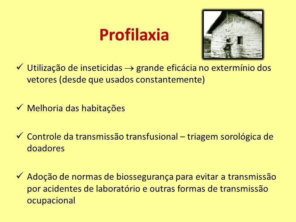 Profilaxia Utilização de inseticidas  grande eficácia no extermínio dos vetores (desde que usados constantemente) Melhoria das habitações Controle da