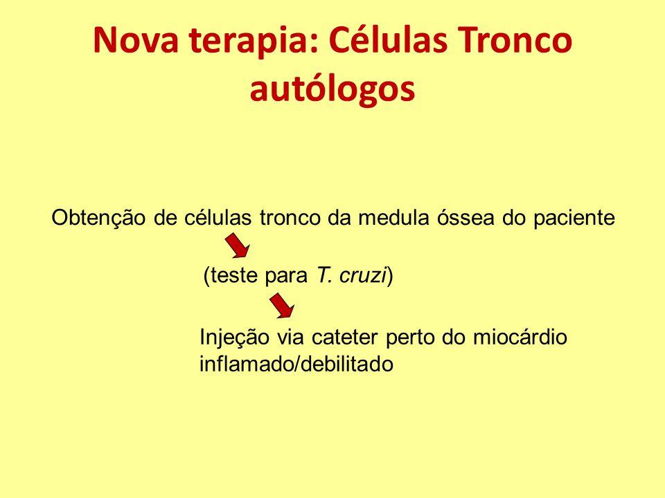 Nova terapia: Células Tronco autólogos Obtenção de células tronco da medula óssea do paciente (teste para T.