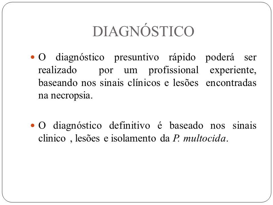 DIAGNÓSTICO O diagnóstico presuntivo rápido poderá ser realizado por um profissional experiente, baseando nos sinais clínicos e lesões encontradas na necropsia.