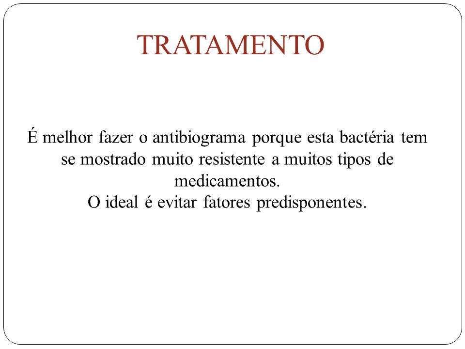 É melhor fazer o antibiograma porque esta bactéria tem se mostrado muito resistente a muitos tipos de medicamentos.
