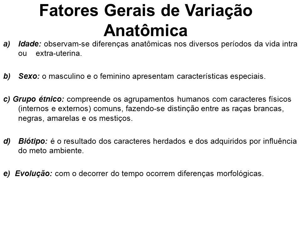 Fatores Gerais de Variação Anatômica a)Idade: observam ‑ se diferenças anatômicas nos diversos períodos da vida intra ou extra ‑ uterina. b)Sexo: o ma