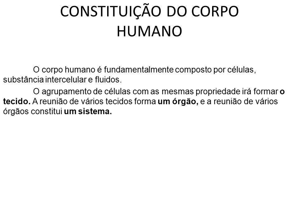 CONSTITUIÇÃO DO CORPO HUMANO O corpo humano é fundamentalmente composto por células, substância intercelular e fluidos. O agrupamento de células com a