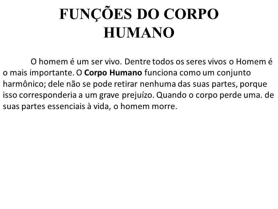 FUNÇÕES DO CORPO HUMANO O homem é um ser vivo. Dentre todos os seres vivos o Homem é o mais importante. O Corpo Humano funciona como um conjunto harmô